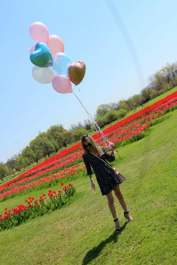 Spring botanical red ballons