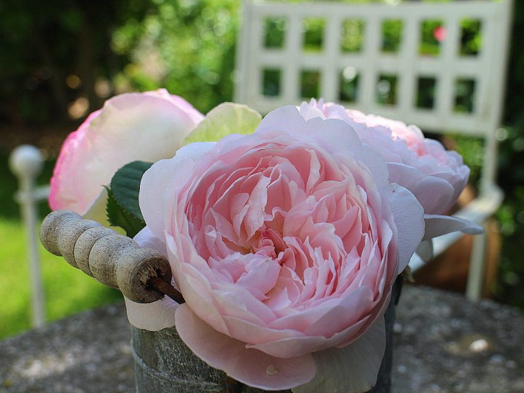 Home garden roses bouquet