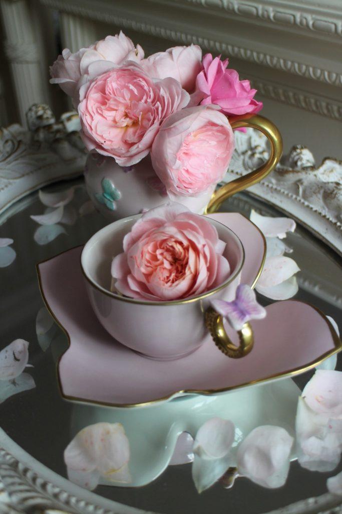 Villari tea cup butterfly