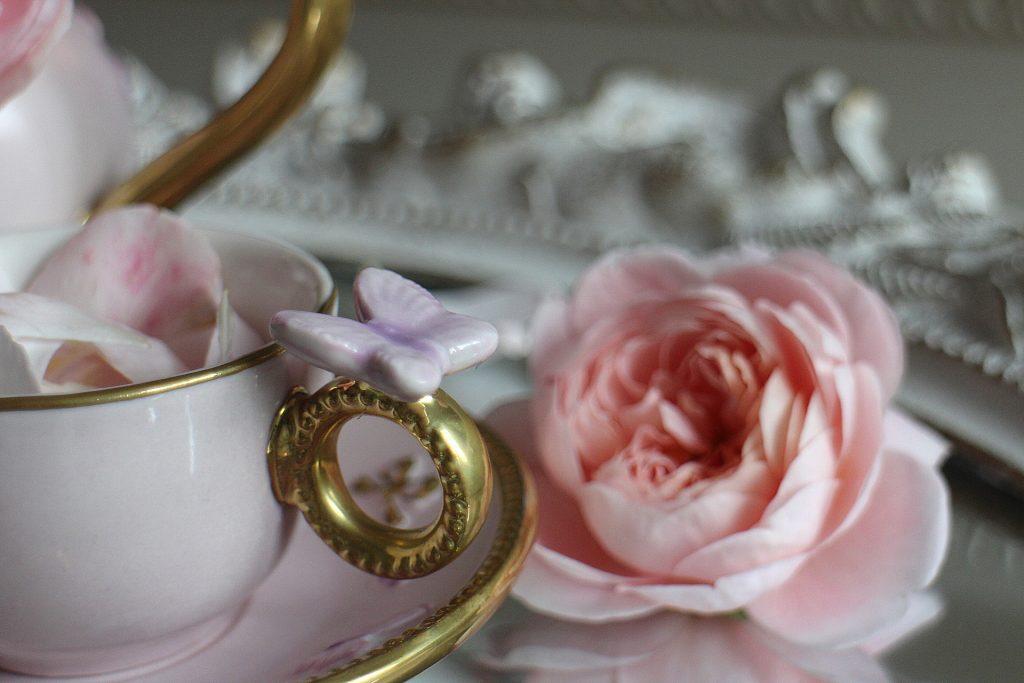 Villari Italy butterfly tea cup